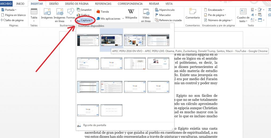 Insertar capturas de pantalla en documentos de Word